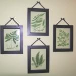 botanical-print-ideas15.jpg