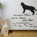 cats-funny-stickers4-2.jpg