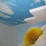 ceiling-ideas-in-kidsroom-nature1-1.jpg