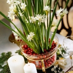 christmas-cranberry-and-red-berries-decorating-combo2-3.jpg