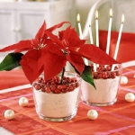 christmas-cranberry-and-red-berries-decorating-combo2-4.jpg