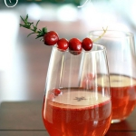 christmas-cranberry-and-red-berries-decorating-misc2-4.jpg