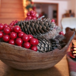 christmas-cranberry-and-red-berries-decorating-misc3-2.jpg