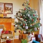 christmas-tree-ideas14.jpg