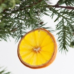 citrus-slices-new-year-deco1-1-5
