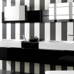 color-black-and-white-bathroom4.jpg