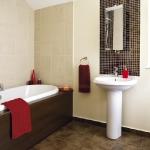 colorful-combo-bathroom15.jpg