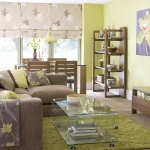 combo-green-and-brown-livingroom1.jpg