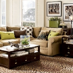 combo-green-and-brown-livingroom12.jpg