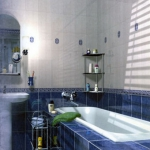 combo-blue-n-white-in-bathroom3.jpg