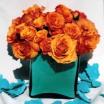 combo-turquoise-tangerine-event1.jpg