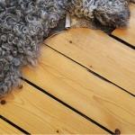 creative-floor-ideas-wood1.jpg
