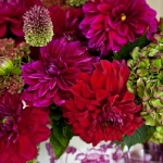 dahlias-bouquets-in-different-shades3-5.jpg