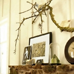 decor-branches3.jpg
