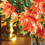 delightful-dahlias-creative-arrangements5-5.jpg