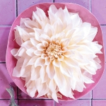 delightful-dahlias-in-floristic-ideas-mini2-1.jpg