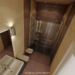 digest109-dark-brown-in-bathroom12-1.jpg