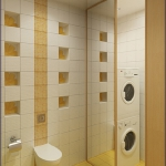 digest65-bathroom-in-eco-style7-2.jpg