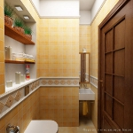 digest93-wc-design-ideas11-2.jpg