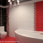 digest98-combo-red-and-white-in-bathroom2-4.jpg