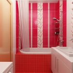 digest98-combo-red-and-white-tile-kerama-in-bathroom2-1.jpg