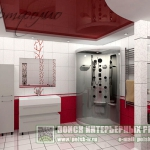 digest98-combo-red-and-white-tile-kerama-in-bathroom3-2.jpg