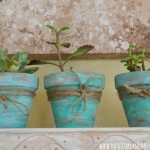 diy-5-flower-pots-decor-from-rope1-4