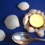diy-sea-life-dining-decor2-step5-4.jpg