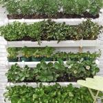 diy-vertical-garden1-5.jpg
