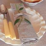 eco-summery-napkins-and-plates2-11.jpg