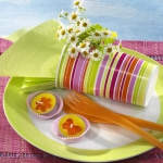 eco-summery-napkins-and-plates3-3.jpg