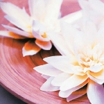 exotic-flowers-arrangement26.jpg