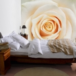 floral-realistic-photo-murals1-1.jpg
