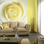 floral-realistic-photo-murals1-6.jpg