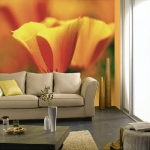 floral-realistic-photo-murals4-6.jpg