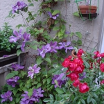 flowers-on-balcony-details6.jpg