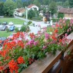 flowers-on-balcony-railing4-2.jpg