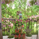 flowers-on-balcony1-3.jpg