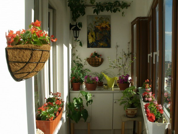 Балкон цветами