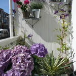 flowers-on-balcony4-4.jpg