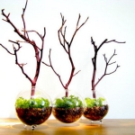 branches-party-decorating-eco5.jpg