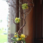 branches-party-decorating-eco7.jpg