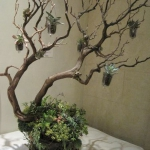 branches-party-decorating-eco9.jpg