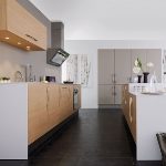 french-modern-kitchen-combo-color4-2.jpg