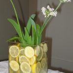 fruit-flowers-centerpiece-citrus15.jpg