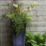 garden-flowers-mix-in-container3-2.jpg