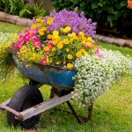 garden-flowers-mix-in-container9-2.jpg