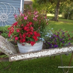 garden-flowers-mix-in-container9-3.jpg