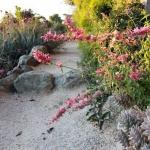 garden-inspiration-by-gabriel-mediterranean11.jpg
