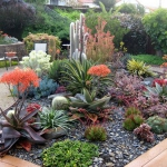 garden-inspiration-by-gabriel-succulent11.jpg